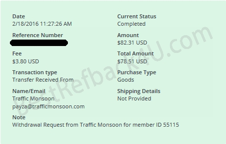 TrafficMonsoon new payment